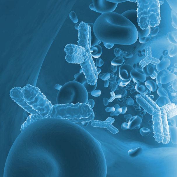 Biopharmaceuticals + Plasma Derivatives